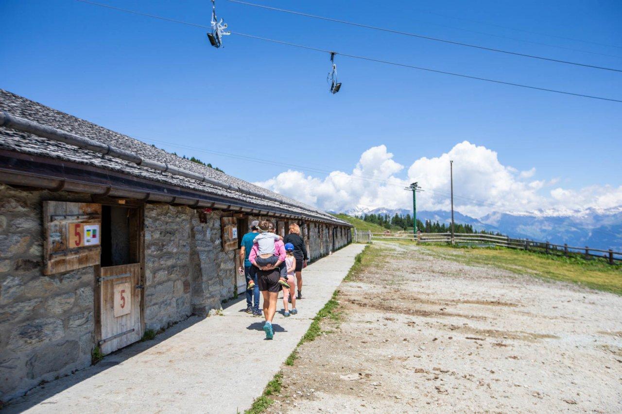 Visite de l'alpage de Thyon